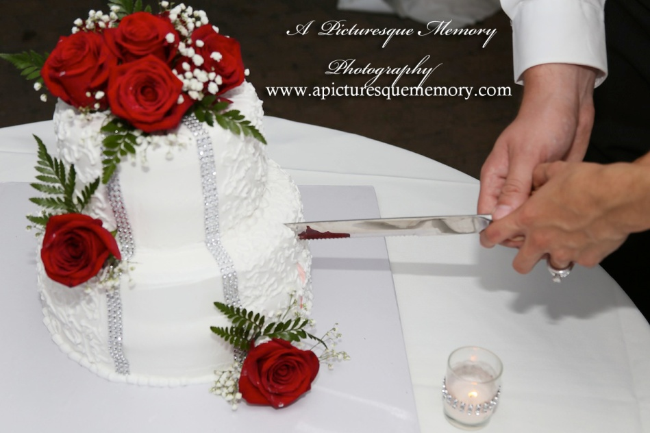 #brideandgroom, #justmarried, #njwedding, #apicturesquememoryphotography, #weddingphotography, #weddings, #watersiderestaurant, #northbergennj, #weddingcake