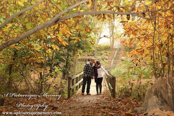 #weddingphotographer, #engagement, #engagementpictures, #engaged, #justengaged, #bridetobe, #groomtobe, #rusticengagementphotos, #apicturesquememoryphotography, #allairestatepark, #fallfoliage, #love