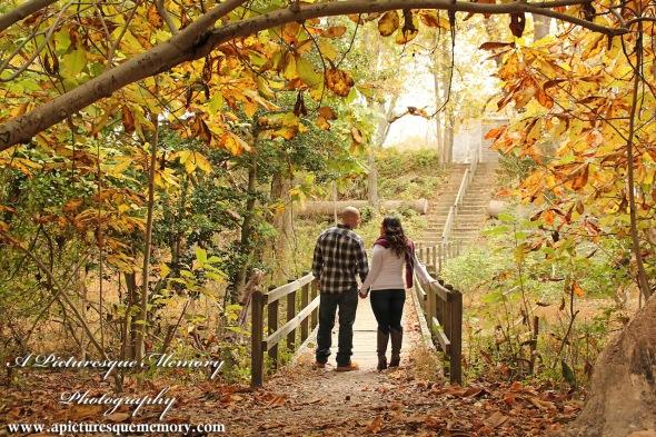 #weddingphotographer, #engagement, #engagementpictures, #engaged, #justengaged, #bridetobe, #groomtobe, #rusticengagementphotos, #apicturesquememoryphotography, #allairestatepark, #fallfoliage