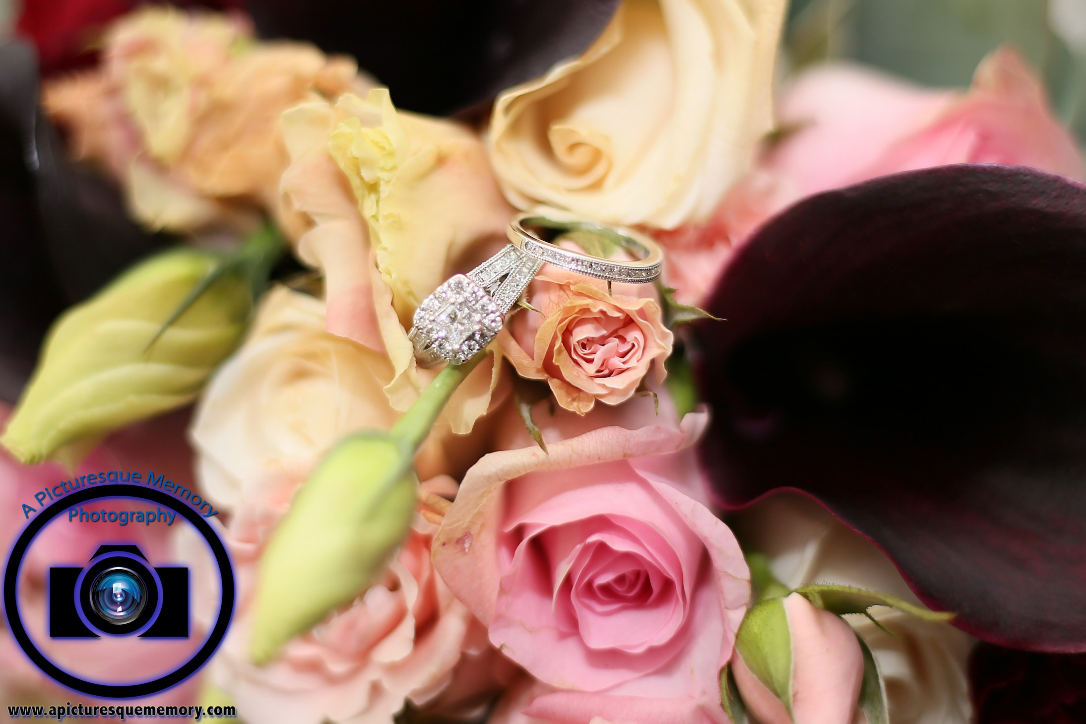 #njwedding, #njweddingphotography, #northbrunswickweddingphotographer#weddingphotos, #apicturesquememoryphotography, #staybridgesuitesweddingphotographer, #bridesbouquet, #weddingband, #engagementring