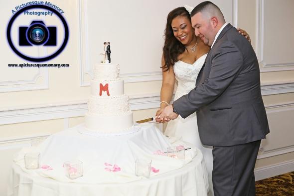 #njwedding, #njweddingphotography, #southbrunswickweddingphotographer#weddingphotos, #apicturesquememoryphotography, #pierresofsouthbrunswickweddingphotographer, #cakecutting